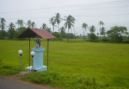 Field in Goa