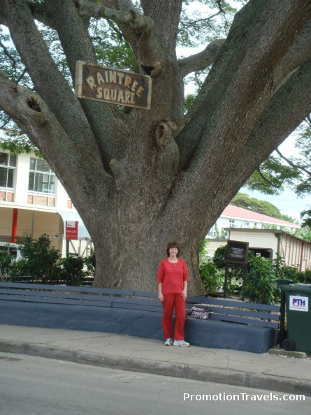 Nancy at Raintree Square.jpg